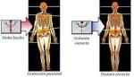t-m-terapia-manuale-e-odontoiatria-it-4.jpg